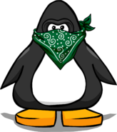 Mask & Bandana PC