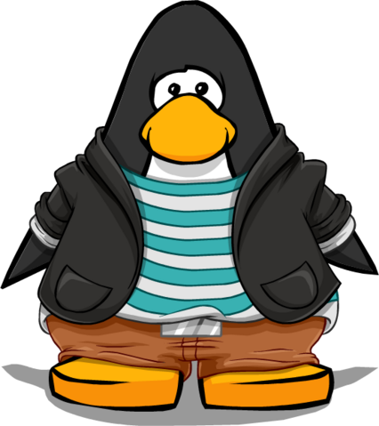 File:Clothing 14927 player card.png