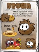 BrownPuffleCatalog