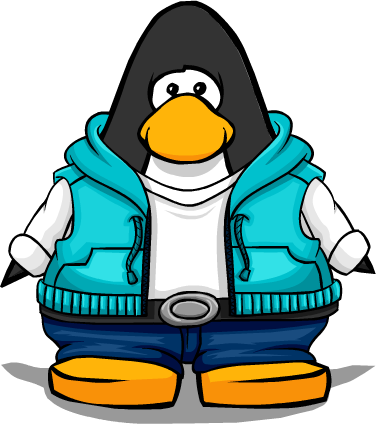 File:Ice Moves Hoodie from a Player Card.png