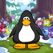Puffle Creature Background on a Player Card