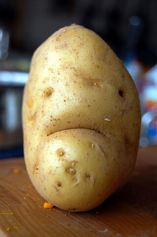 File:Mr. Grumpy Potato.jpg