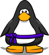 Purple Belt from a Player Card