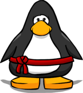 Red Belt from a Player Card