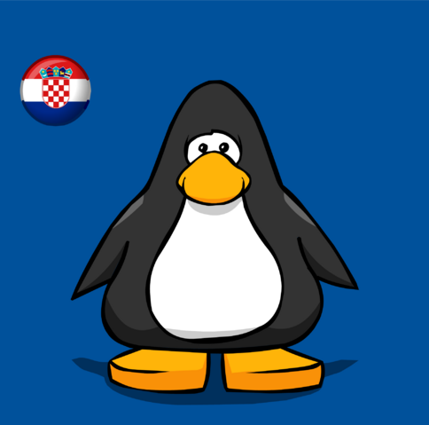 File:Croatia Flag on Player Card.png