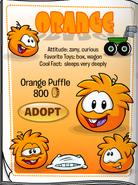 OrangePuffleCatalog