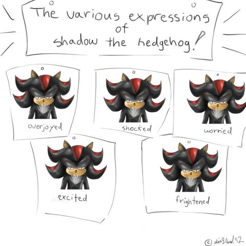 File:The various expressions of shadow the hedgehog by laffforever-d546vox.jpg