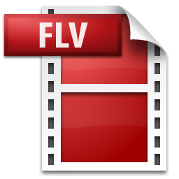 File:FlashVideo.png