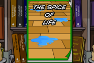 Spice of life cover