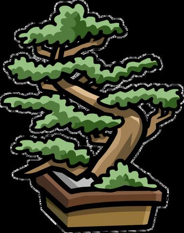 File:Dojo Bonsai Tree.png