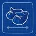 Blueprint Shoe-Ins icon