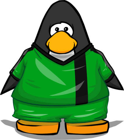 File:Clothing 24132 player card.png