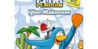 Igloo Makeover