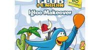 Igloo Makeover