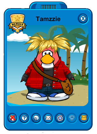 File:Tamzzie 2013.png