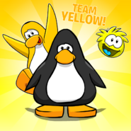Go Yellow BG Player Card