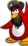 Rockhopper waving