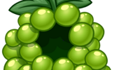 Green Grape Costume