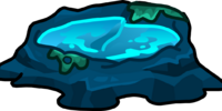 Tidal Pools