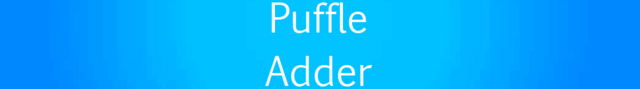 File:Puffle Adder.png
