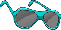 Real Teal Sunglasses