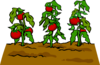 Garden sprite 018