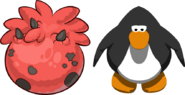 Red Triceratops Puffle Egg IG