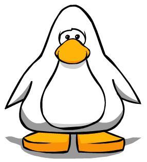 File:White penguin.jpg