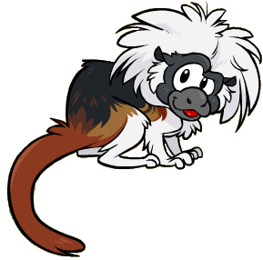 File:Cotton Top Tamarin Icon.png