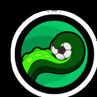 Team-Squids