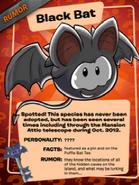 BlackBatPoster