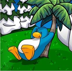 File:Penguin-relaxing.jpg
