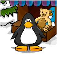 Teddy Bear Background on a Player Card