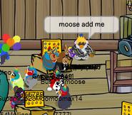 MOOSE 8th
