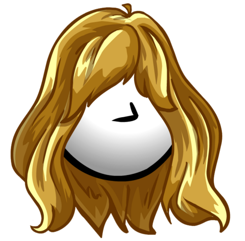 File:The Sunray clothing icon ID 1063.png