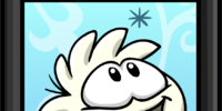 White Puffle Picture