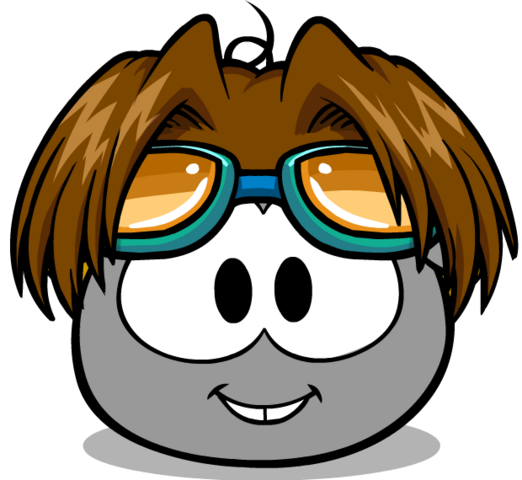 File:Puffle Care Hats Head Thehighflyer.png