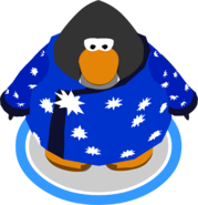 Blizzard Wizard Robe ingame