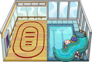 Gymnasium Igloo in-game