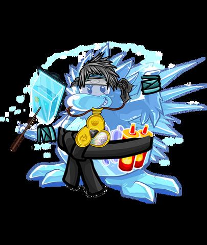 File:Ice ninja123.png
