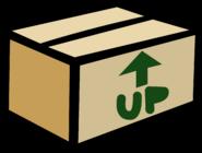 CardboardBoxPinGary'sRoom