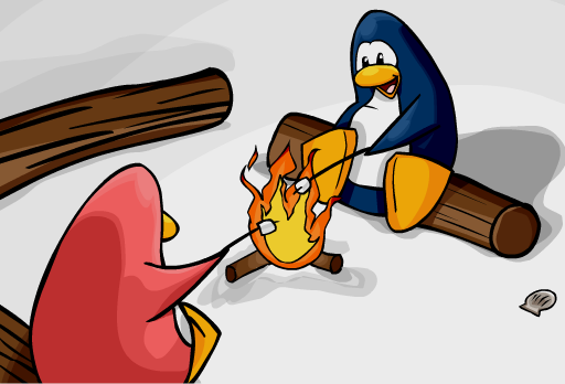 File:Cove Campfire.png