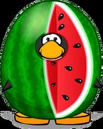 Watermelon Costume PC
