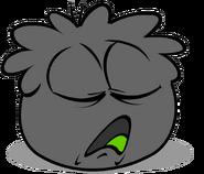Black Puffle (4)
