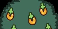 Multi-berry Bush