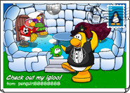 Check out my igloo postcard