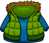 Green Vest clothing icon ID 4023