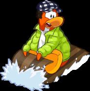Orange-penguin126
