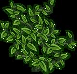 Vines sprite 006