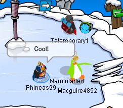 File:Fun wth Macgure and others Puffle Party 2013